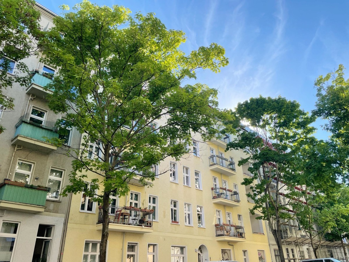1 Room Apartment in Beautiful Altbau Located Winsviertel for Capital Investment