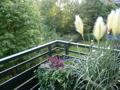 Balkon mit Blick aufs Grundstück
