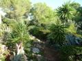 15 Jardin torrente