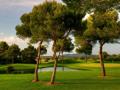 Campo de Golf Son Antem_2