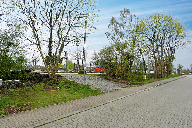Schwarmstedt (2)