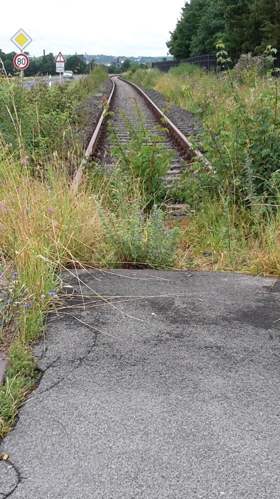 Strecke an der St 2272 Ri Westen