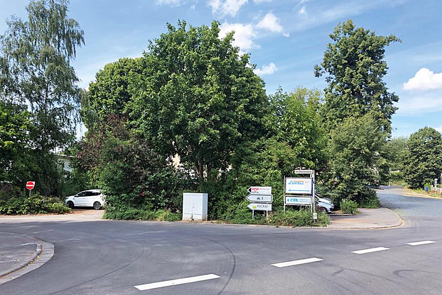 Lauterbach (2)