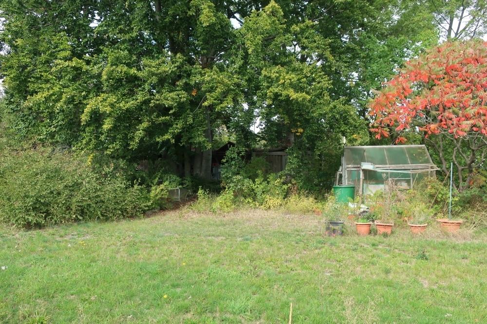 Niederwiesa östl Fläche mit Garten