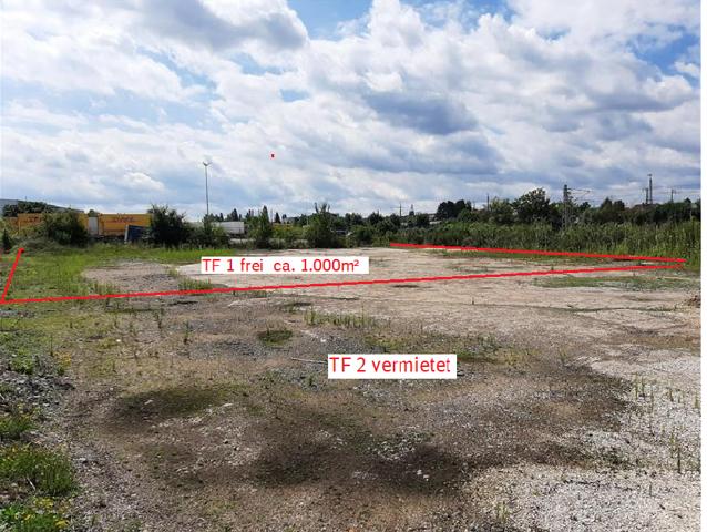 Foto mit Flächenskizzierung