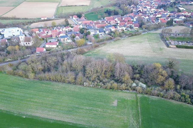 Freiersheim (1)