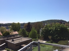 Blick aus dem Wohnbereich