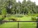 Gartenblick Sommer