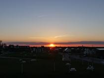 Blick in die Abendsonne