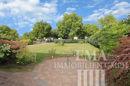 Blick in den Garten (2)