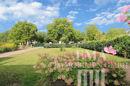 Blick in den Garten (3)