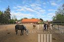 Auslauf für die Pferde