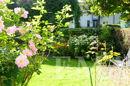 Garten Sommeraufnahme