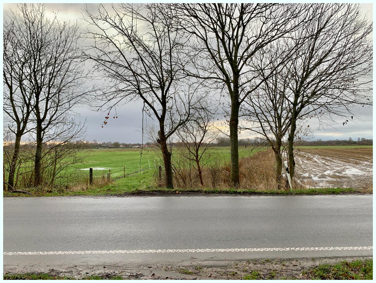 0665 Blick Richtung Friedrichstadt