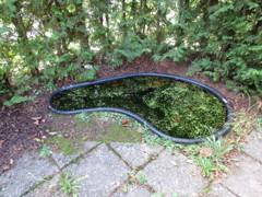 Garten-Teich