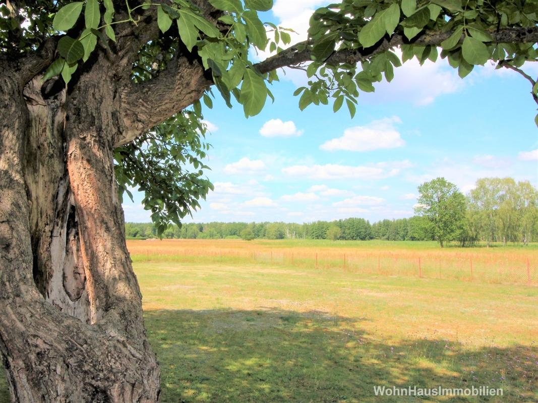 4,9 Hektar Land und Hof