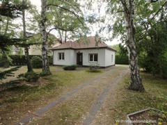 Kleines Haus im Birkenhain