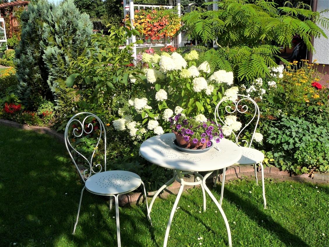 Gartenimpressionen 7