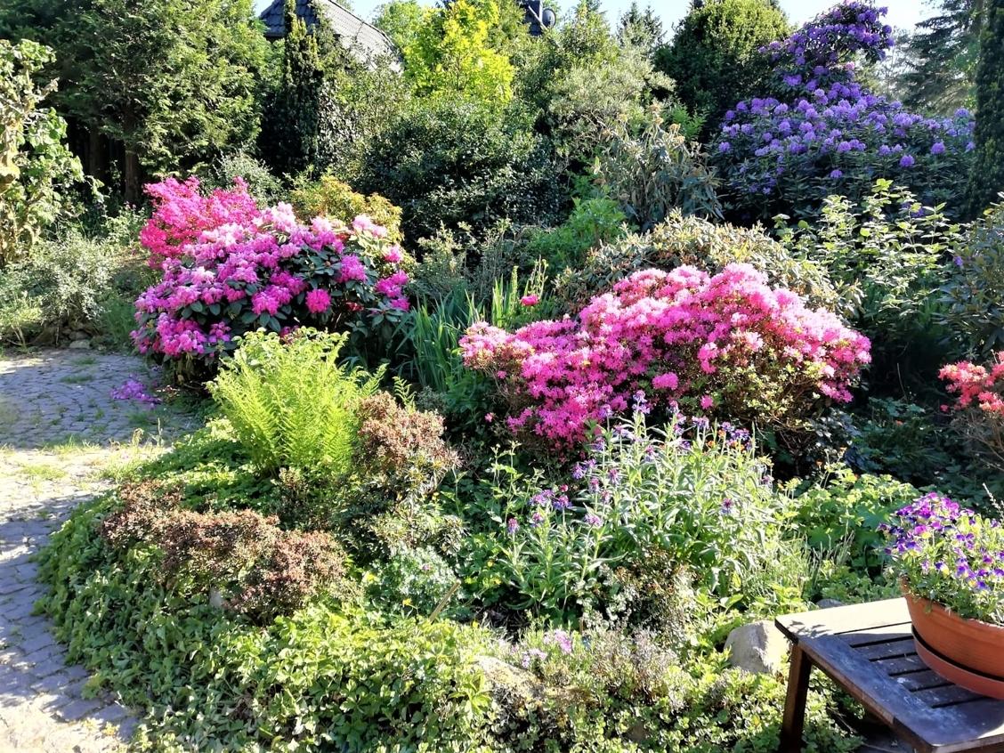 Gartenpracht im Frühling (c) Verkäufer