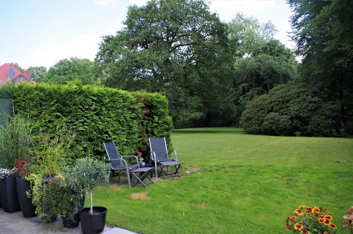 Gartenimpressionen 1