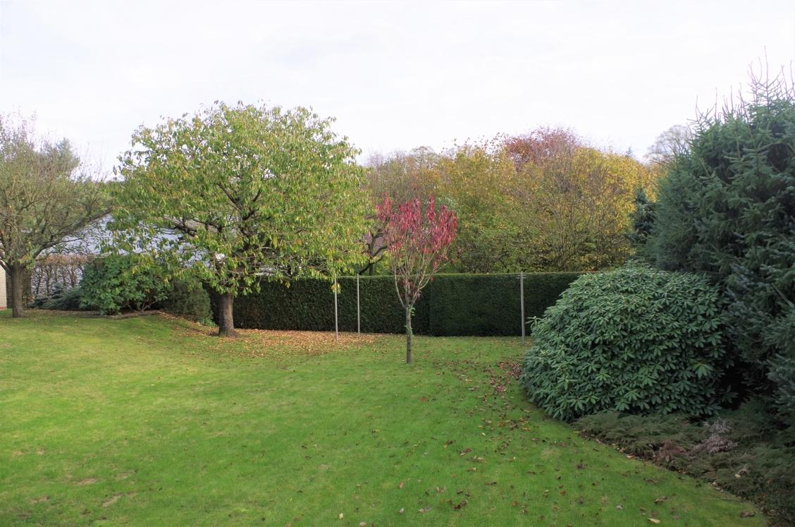Garten mit hohen Hecken