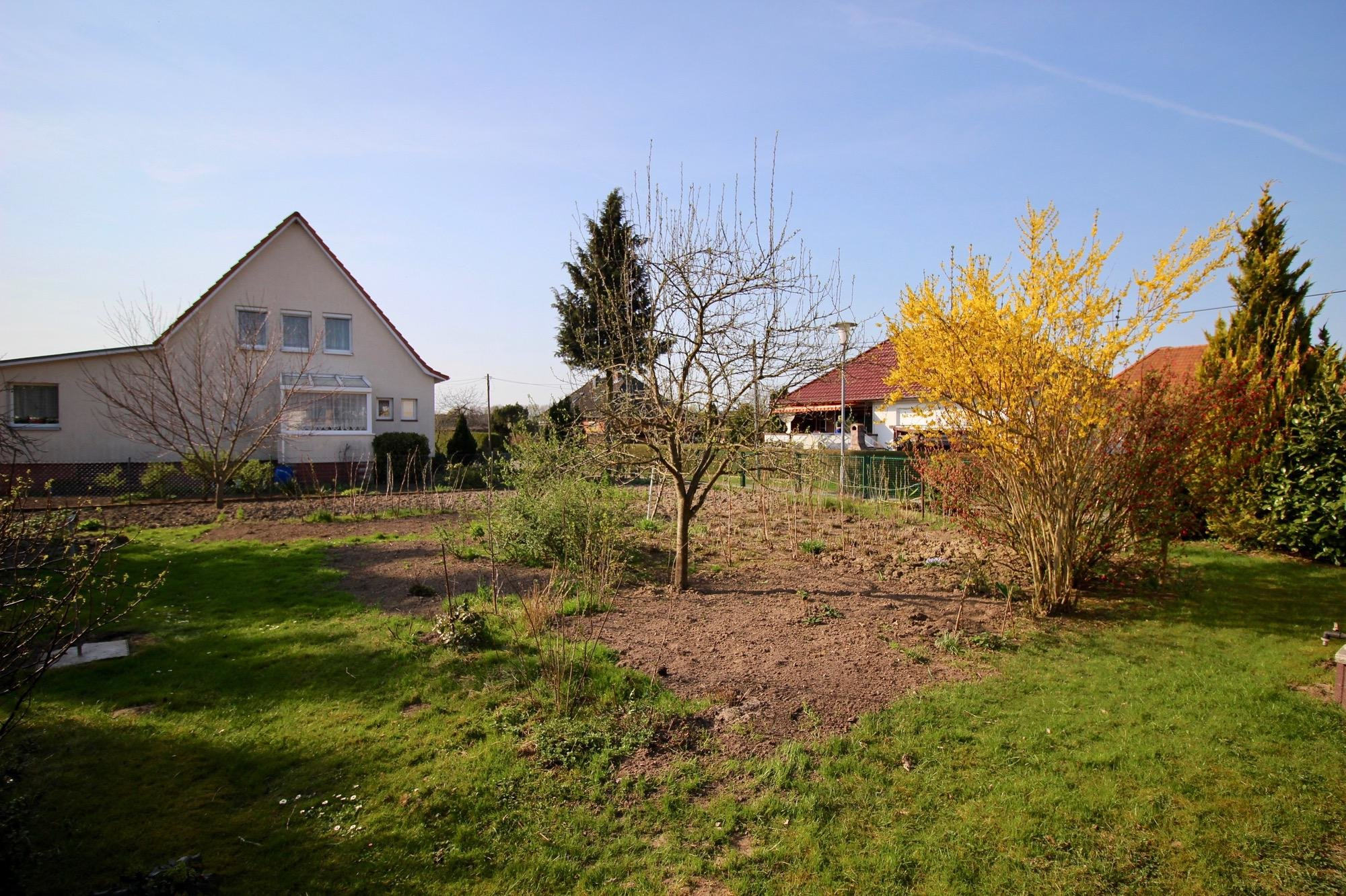 Der große Garten oder Baugrundstück