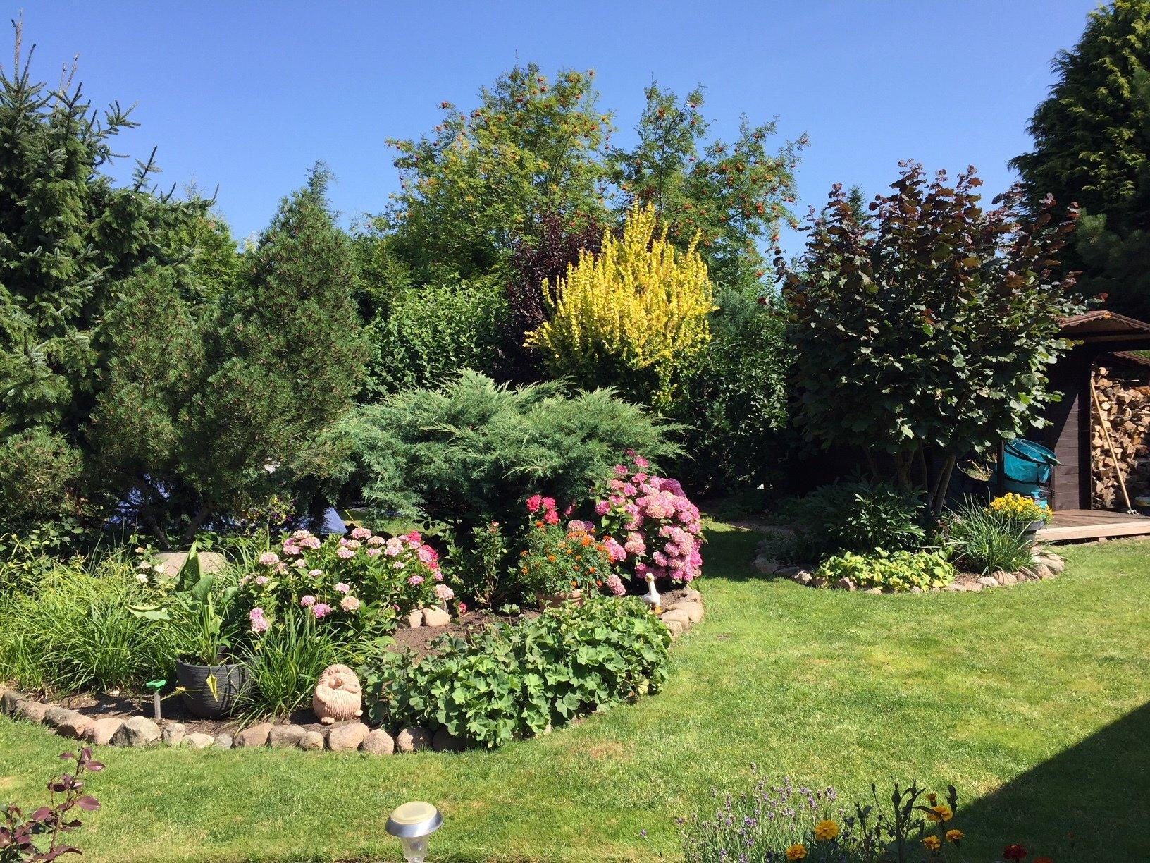 Blumengarten mit Gartenhäuschen