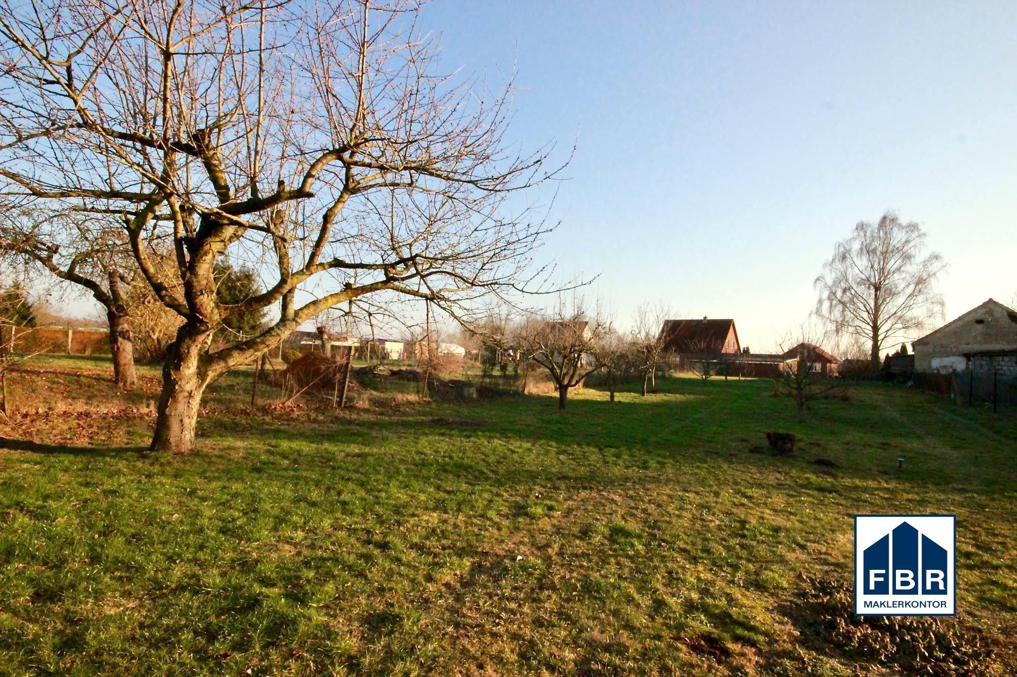 Grünanlage auf dem Grundstück