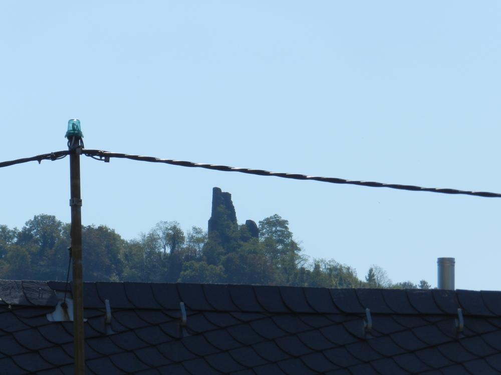 Blick zum Wolfer Kloster