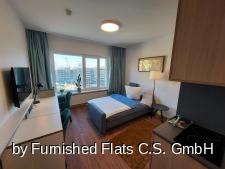 FF FT118 Wohnraum
