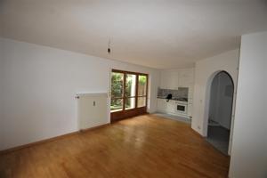 Helles Wohnzimmer mit Küchenzeile