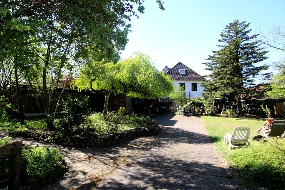 Blick vom Garten 2