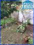 Garten Hinterhaus