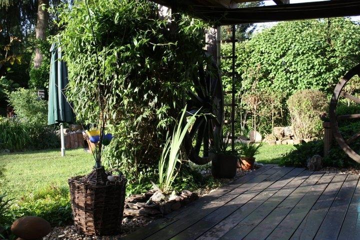 Garten 11