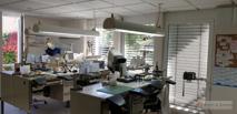 Innenansicht Labor 03