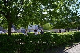 Green environment: various parks & the Landwehrkanal