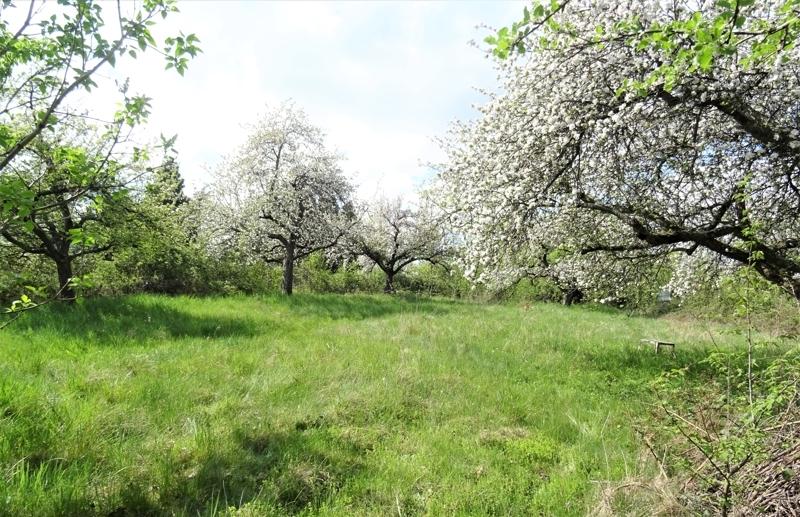 Gartengrundstück Heubach