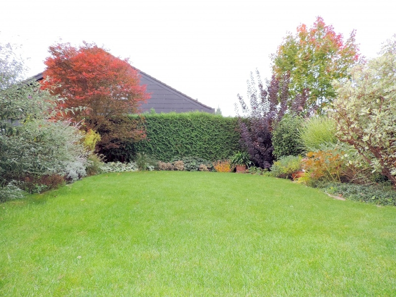 Im Garten - aufwendig angelegt u. bepflanzt