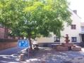 Kirchplatz, Linde und Brunnen.png