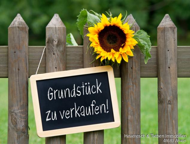AdobeStock_53649155