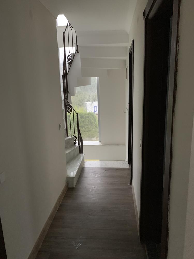 Villa in Cesmealti (10)