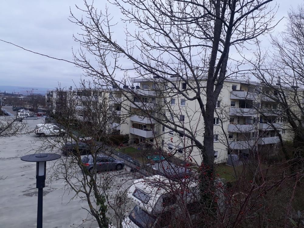 Mainz (5)