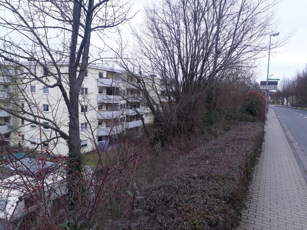 Mainz (7)