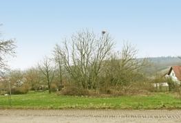 Ansicht-2