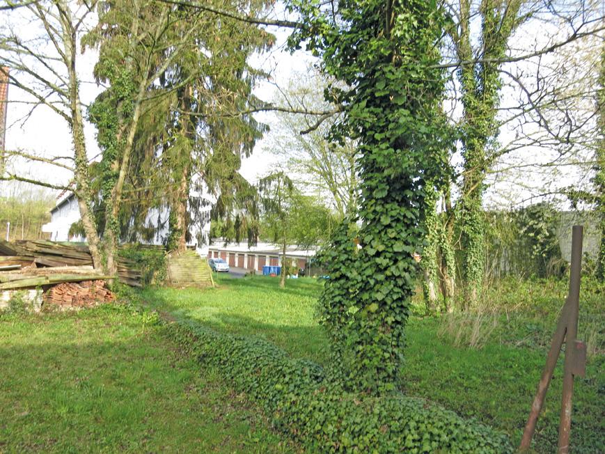 5329-07-Garten