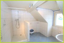 Tageslicht- Badezimmer Dach