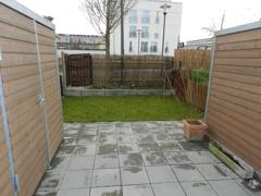 Garten mit Gartenbox
