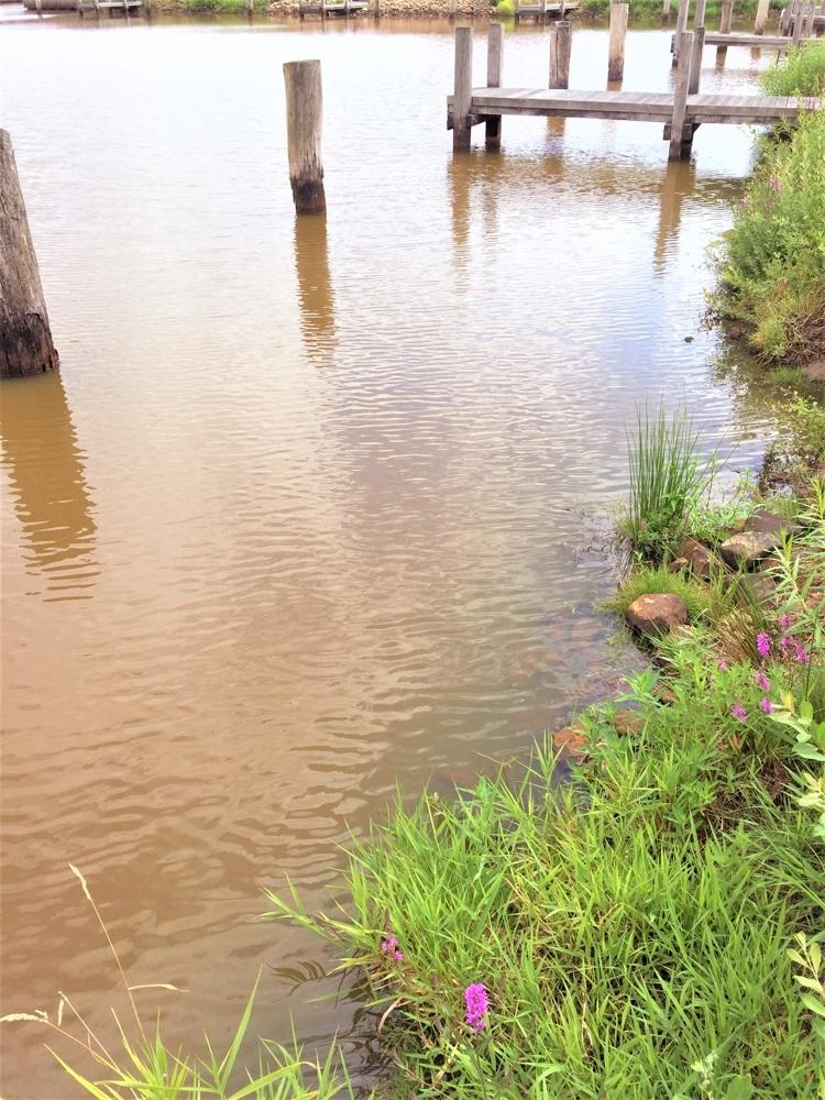 Grundstück mit Wasserblick