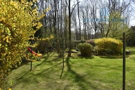Gartenansicht (2)