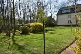 Gartenansicht (1)